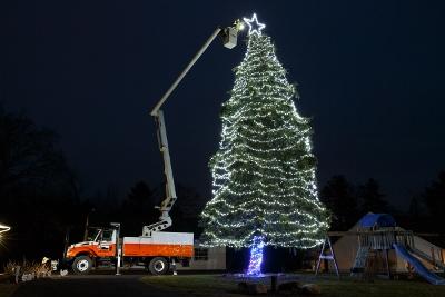 Christmas-Tree_018-001 (400x267)