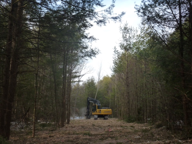 Land Clearing & Brush Mowing